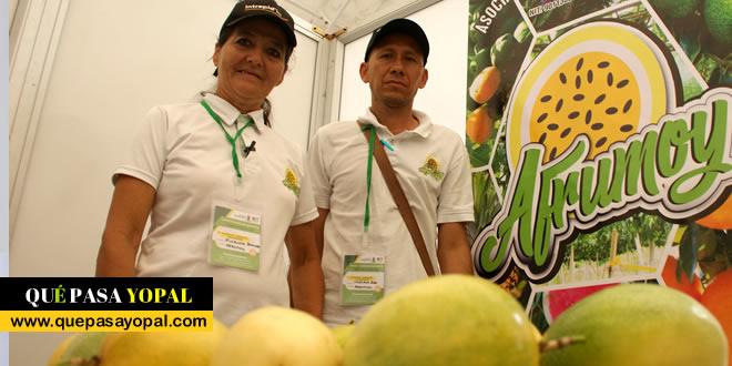 Photo of Fortalecimiento de Cadenas Productivas en Casanare