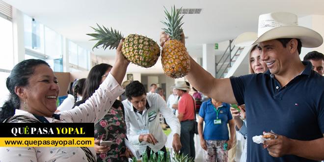 Photo of Cadenas productivas de piña y platano este fin de semana Yopal
