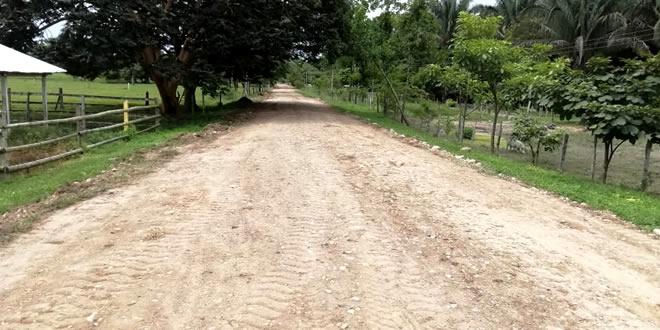 Photo of consejo de estado estudiará apelación contra orden para intervenir tramo vial en Casanare