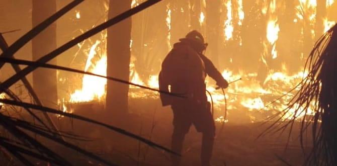 Photo of Alerta roja en Casanare por incendios forestales