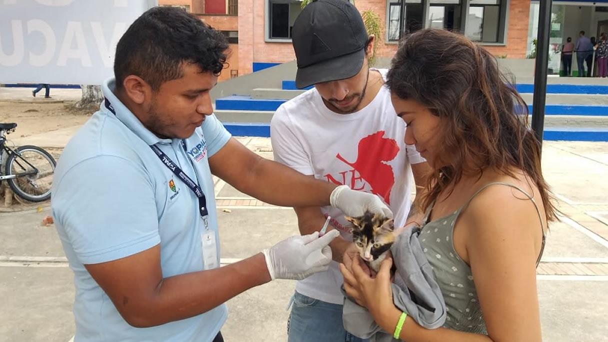 Photo of 74 mascotas fueron vacunadas por la Secretaría de Salud de Yopal