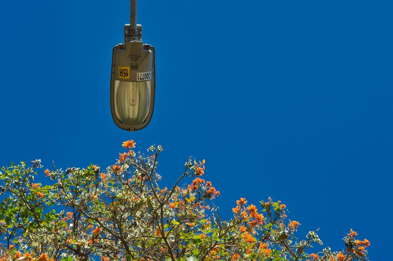 Photo of Repararon luminarias y redes de alumbrado público en Yopal