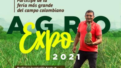 Photo of Casanare participa en agroexpo con varios emprendimientos productivos